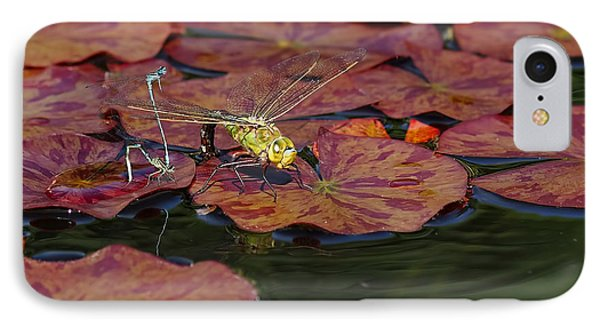 IPhone Case featuring the photograph Green Darner Dragonfly With Friends by Rona Black