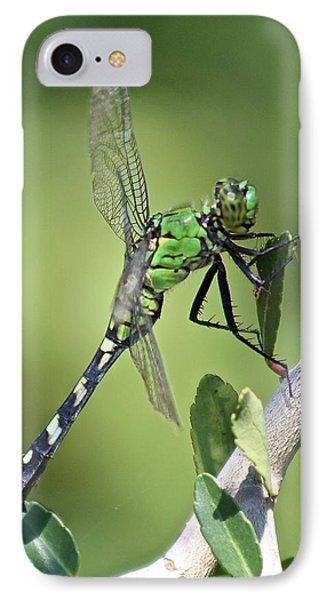 Green Dragonfly Eastern Ponhawk IPhone Case by Jeanne Kay Juhos