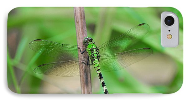IPhone Case featuring the photograph Green Dragonfly by Linda Segerson