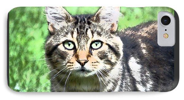 Green Eyed Cat IPhone Case by Gena Weiser