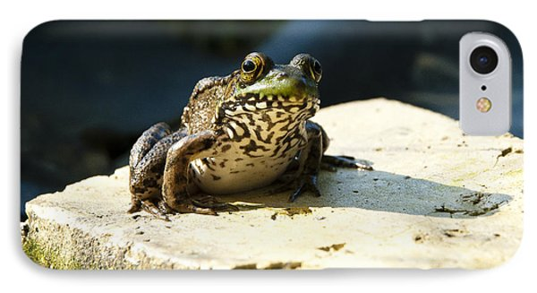 Green Frog - Lookin At Yah IPhone Case by Janice Adomeit