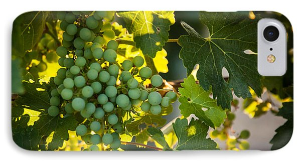 Green Grapes IPhone Case by Ana V Ramirez