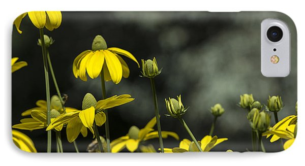 Green Headed Coneflower IPhone Case