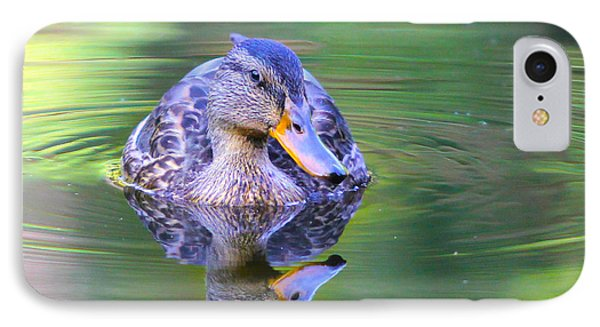 Green-headed Duck At Sunset IPhone Case by Jivko Nakev