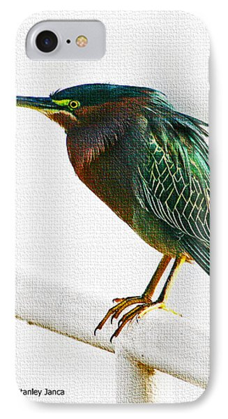 Green Heron In Scottsdale IPhone Case by Tom Janca