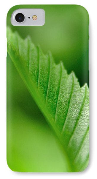 Green Leaf 002 IPhone Case by Todd Soderstrom