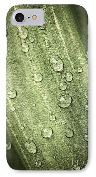 Green Leaf With Raindrops Phone Case by Elena Elisseeva