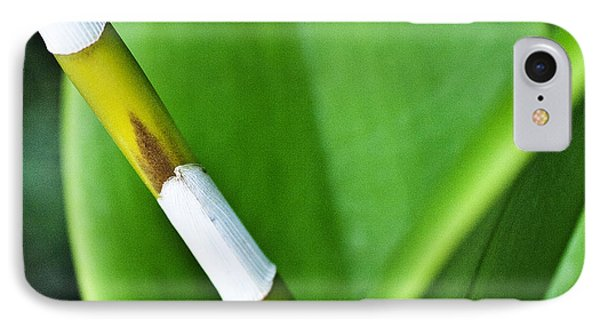 Green Leaves Phone Case by Heiko Koehrer-Wagner