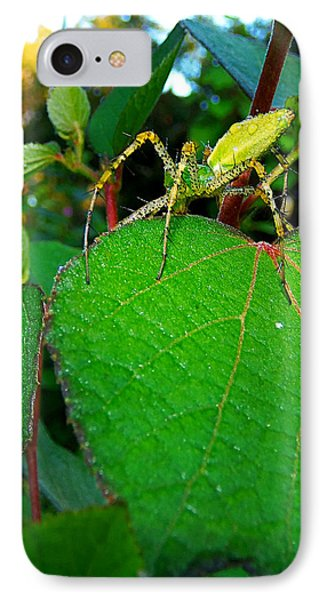 IPhone Case featuring the photograph Green Lynx Spider 002 by Chris Mercer