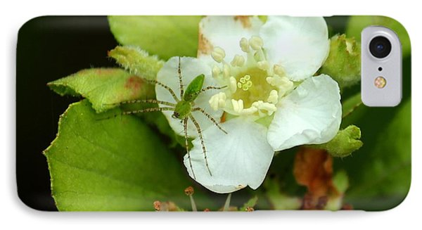 Green Lynx Spider On Blossom Phone Case by Theresa Willingham