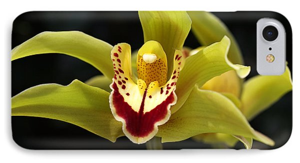 Green Orchid Flower IPhone Case