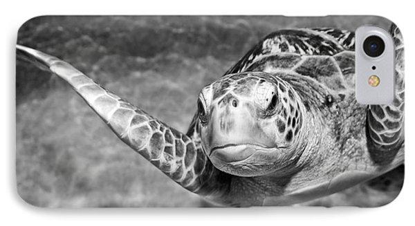Green Sea Turtle. Phone Case by Jamie Pham