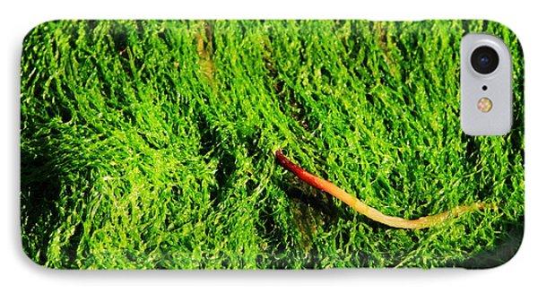 Green - Seaside Abstract Phone Case by Aidan Moran