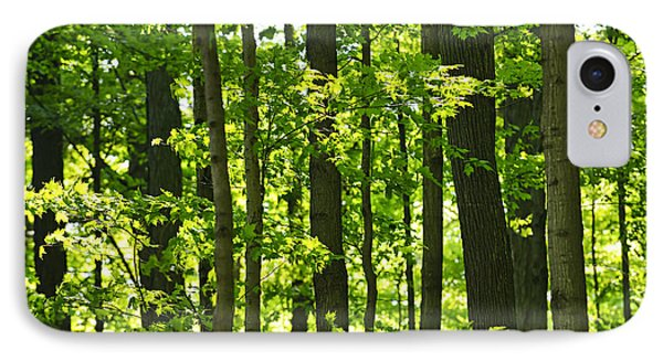 Green Spring Forest IPhone Case by Elena Elisseeva