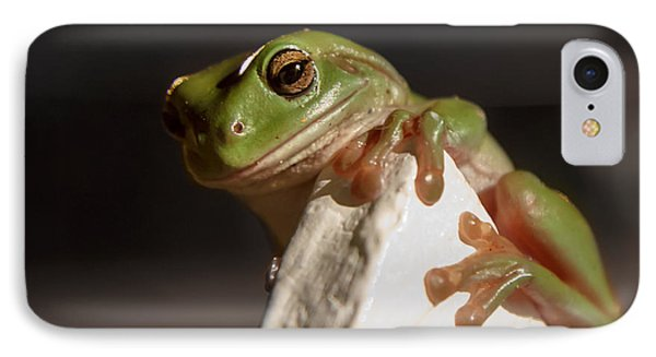 Green Tree Frog Keeping An Eye On You IPhone Case by Peta Thames