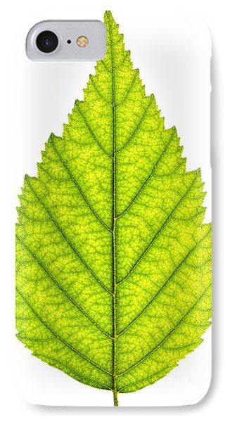 Green Tree Leaf IPhone Case
