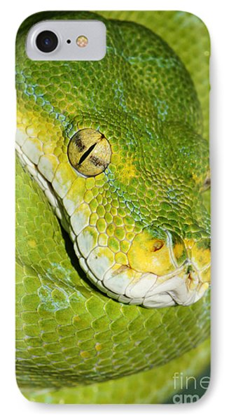IPhone Case featuring the photograph Green Tree Python #2 by Judy Whitton