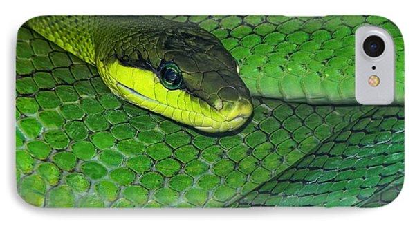 Viper iPhone 7 Case - Green Viper by Joachim G Pinkawa