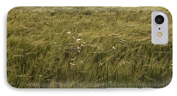 Green Wheat Vision IPhone Case