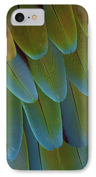 Green-winged Macaw Wing Feathers IPhone Case by Darrell Gulin