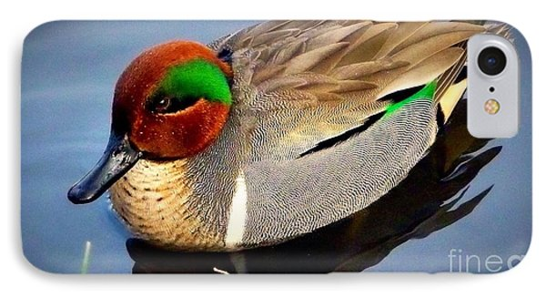 Green Winged Teal  Duck  IPhone Case