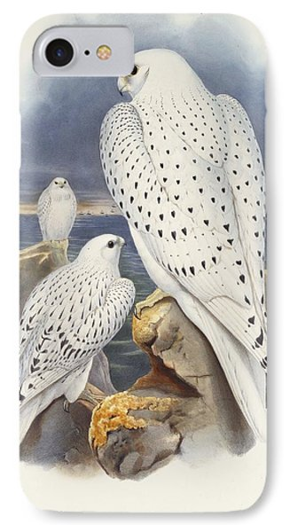 Greenland Falcon IPhone 7 Case by John Gould
