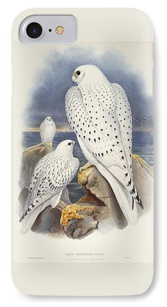 Greenland Falcon IPhone Case by John Gould