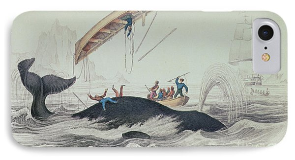 Greenland Whale Book Illustration Engraved By William Home Lizars  IPhone Case by James Stewart