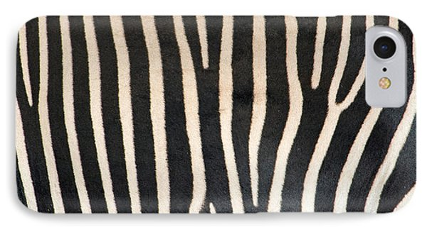 Greveys Zebra Stripes IPhone Case by Panoramic Images