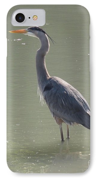 IPhone Case featuring the photograph Grey Bird by Oksana Semenchenko