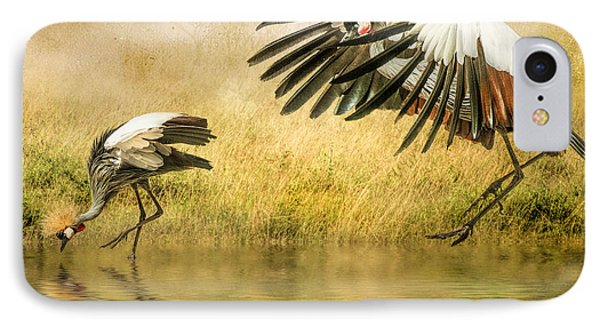 IPhone Case featuring the photograph Grey Crowned Cranes by Brian Tarr