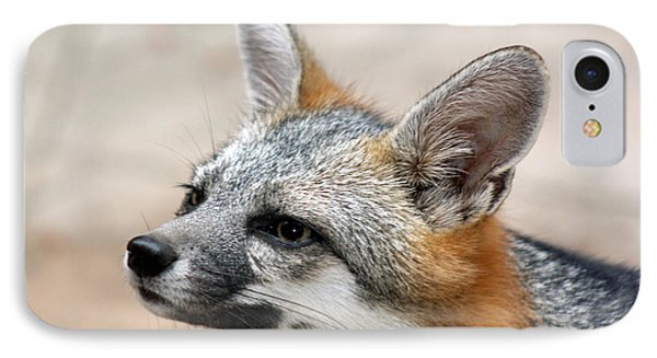 IPhone Case featuring the photograph Grey Fox by Elaine Malott