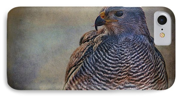 IPhone Case featuring the photograph Grey Hawk by Barbara Manis