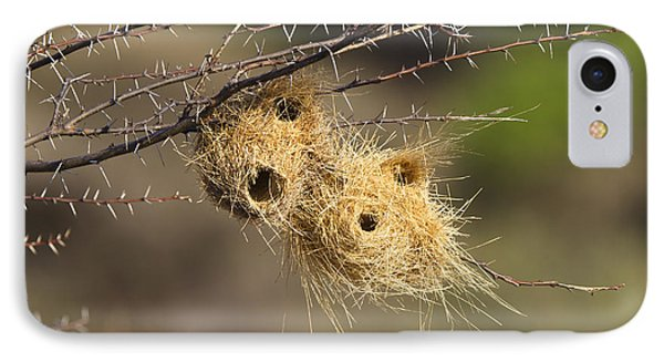 Grey-headed Social-weaver Nests Tanzania Phone Case by Konrad Wothe