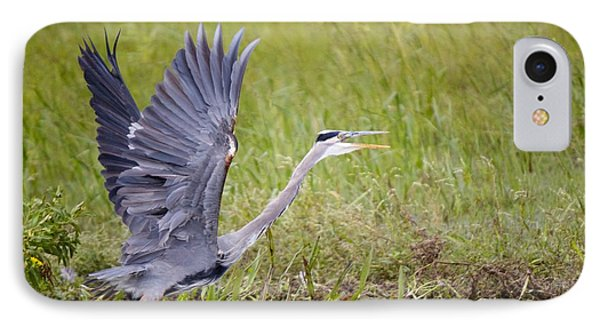 IPhone Case featuring the photograph Grey Heron by David Grant