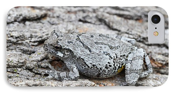 IPhone Case featuring the photograph Cope's Gray Tree Frog by Judy Whitton
