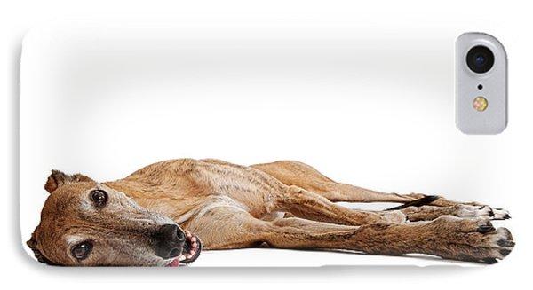 Greyhound Dog Laying Down IPhone Case by Susan Schmitz