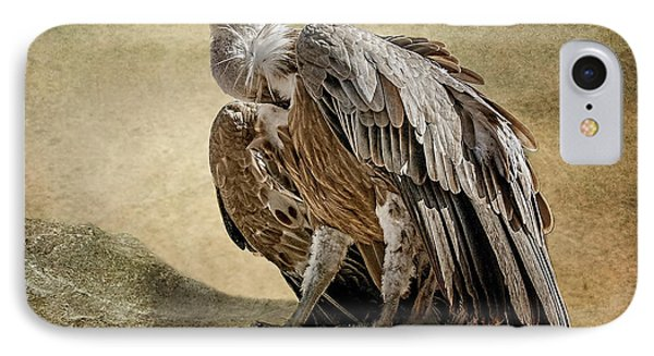 IPhone Case featuring the photograph Griffon Vulture by Brian Tarr