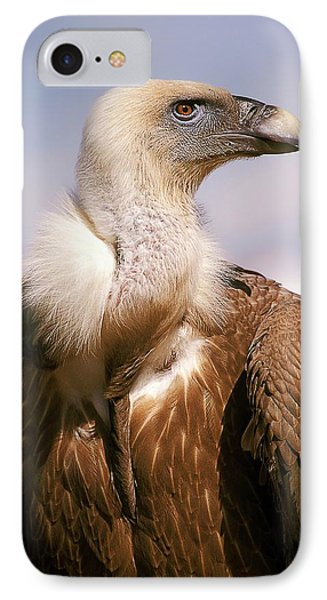 Griffon Vulture (gyps Fulvus) IPhone 7 Case by Photostock-israel