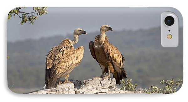 Griffon Vulture Pair Extremadura Spain IPhone 7 Case by Gerard de Hoog