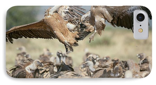 Griffon Vultures IPhone 7 Case by Nicolas Reusens
