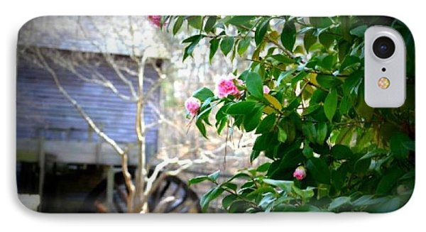 IPhone Case featuring the photograph Grist Mill Roses by Tara Potts