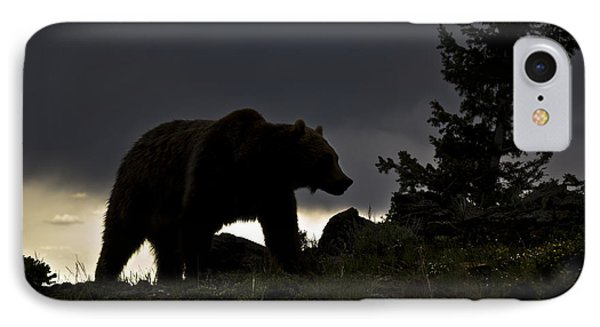 Grizzly-animals-image IPhone Case by Wildlife Fine Art