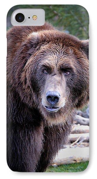 Grizzly IPhone Case by Athena Mckinzie