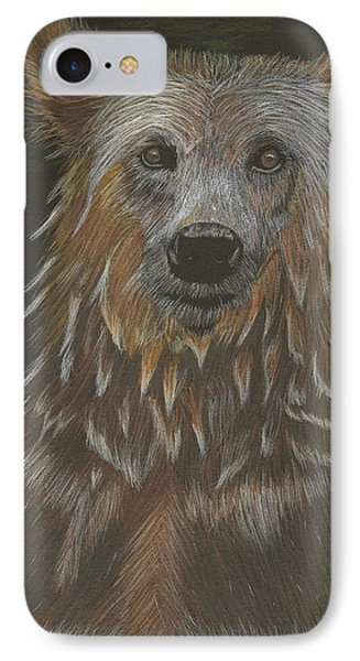 Grizzly Bath IPhone Case by Sheila Byers