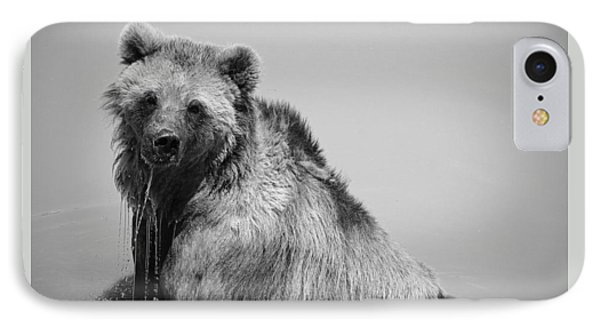 Grizzly Bear Bath Time IPhone Case