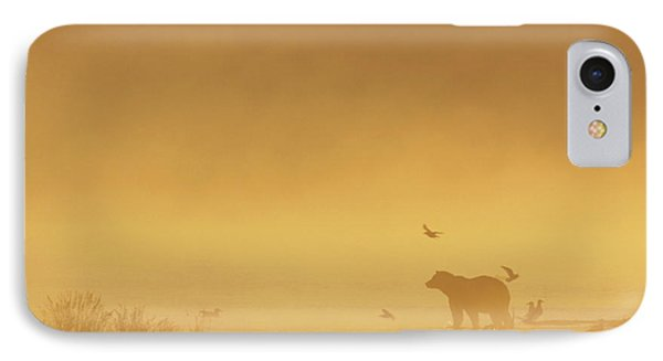 Grizzly Bear In Morning Fog Phone Case by Matthias Breiter
