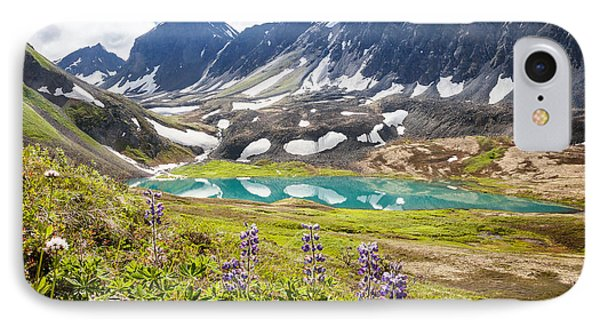 Grizzly Bear Lake IPhone Case