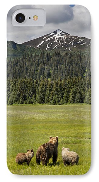 Grizzly Bear Mother And Cubs In Meadow IPhone Case by Richard Garvey-Williams