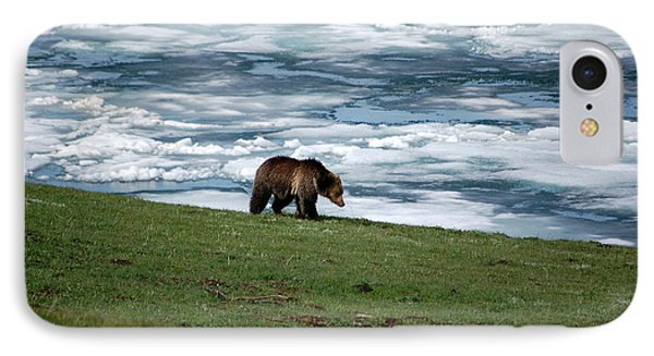 IPhone Case featuring the photograph Grizzly Bear On The Shoreline Of Frozen Lake Yellowstone by Shawn O'Brien